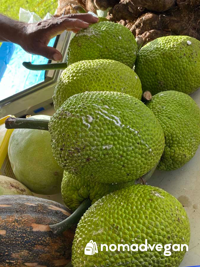 breadfruit guam fruit
